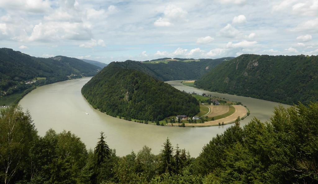 De Donau is hier erg bochtig. Er is een wandelpad vanaf de jachthaven naar boven, vanwaar je dit uitzicht hebt op de 'Schlögener Schlinge'